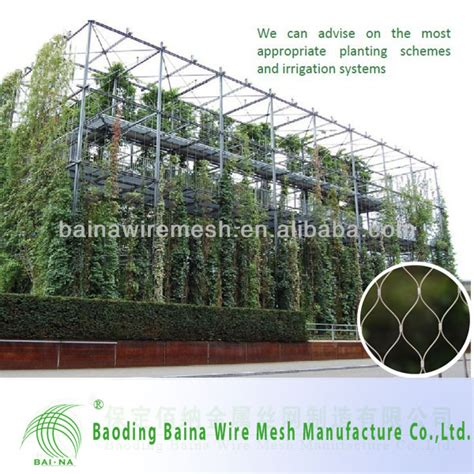 Stainless Steel Decorative Green Wall Climbing Wire Mesh
