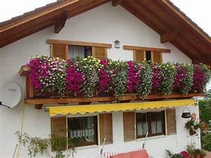 Blumenkästen Bepflanzen Sonnig : balkonk sten mein sch ner garten forum ~ Frokenaadalensverden.com Haus und Dekorationen