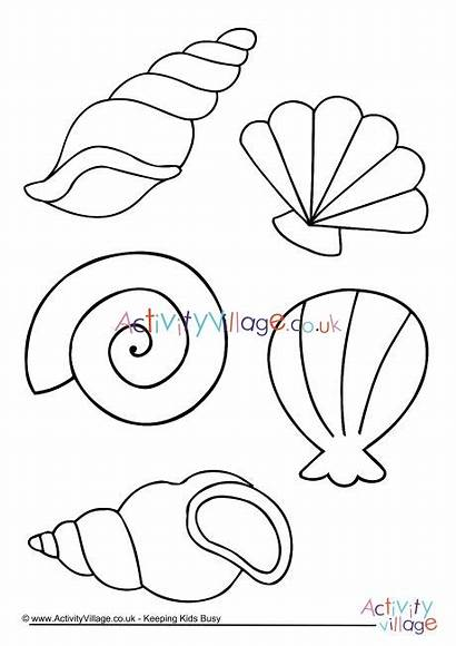 Colouring Shell Coloring Sea Shells Pages Printable