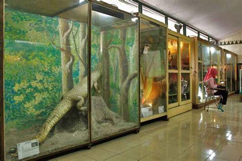 museum biologi yogyakarta yogya gudegnet