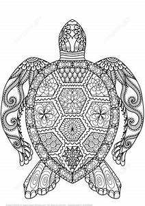 Schildkrte Zentangle Ausmalbild Mandalas Ausmalen