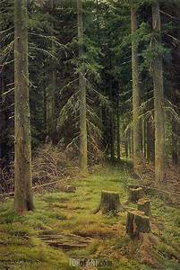 Java Script Code Examples Fir Tree Forest Ivan Shishkin Painting Reproduction