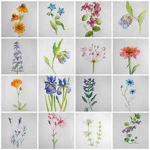 Aquarell Blumen Malen : blumen aquarelle arrangieren wer die wahl hat hat die qual gesche santen blog aquarell ~ Frokenaadalensverden.com Haus und Dekorationen