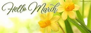 Hello March Fresh Fulips Facebook Cover, Hello March Fresh ...