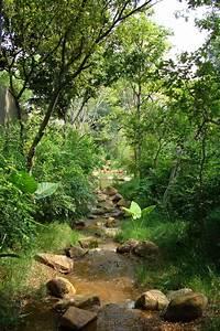 Garden, Stream