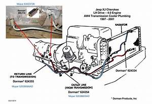 Lower Transmission Cooler Line Replacement  Which Part