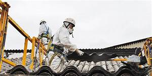 Renovation Toiture Fibro Ciment Amiante : r novation de toiture en fibro ciment ~ Nature-et-papiers.com Idées de Décoration