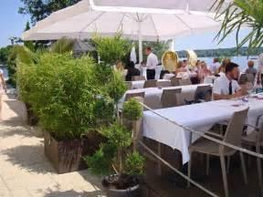 sichtschutz balkon pflanzen bambus als sichtschutz für terasse und balkon bambus und pflanzenshop
