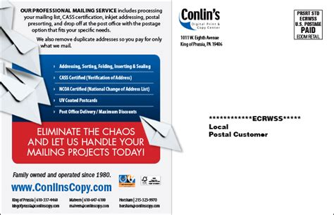 eddm template every door direct mail vs bulk mail which should your business use infographic