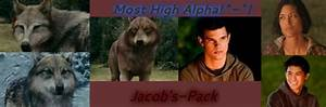 Jake-Wolf-Pack-EP - Jacob Black & Leah Clearwater Image ...