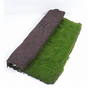 Plaque De Mousse : plaque de mousse artificielle 100x100cm mat riel mur ~ Farleysfitness.com Idées de Décoration