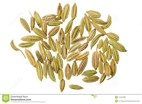 Anise Seeds Royalty Free Stock Photos Image 17431008