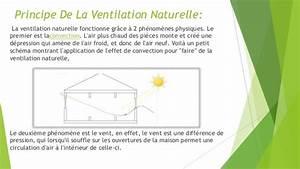Ventilation Naturelle D Une Cave : la ventilation naturelle dans les longements ~ Premium-room.com Idées de Décoration