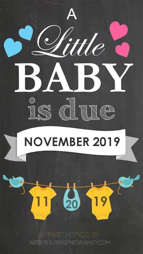 Due Date: November 20 2019 During Pregnancy