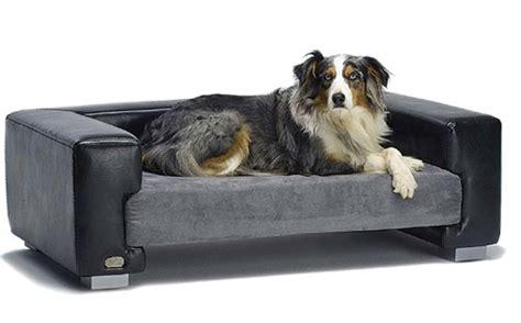 dog beds beds sale