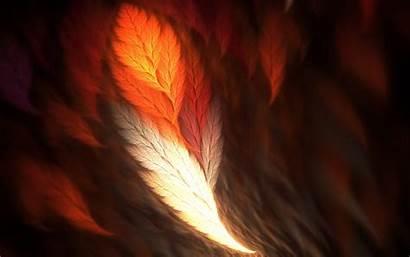 Phoenix Wallpapers Bsnscb Px