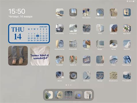 ios 14 home screen ideas aesthetic blue in 2021