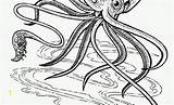 Coloring Pages Cuttlefish Squid Witch Inspirational Lovely Fresh Divyajanani sketch template