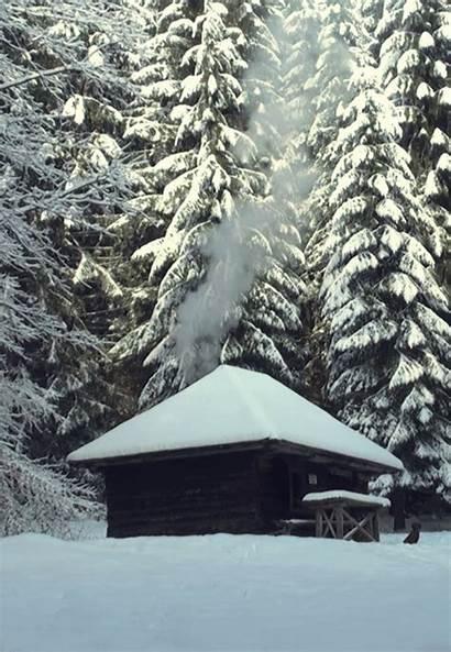 Winter Snow Animated Gifs Nature Cozy Wonderland