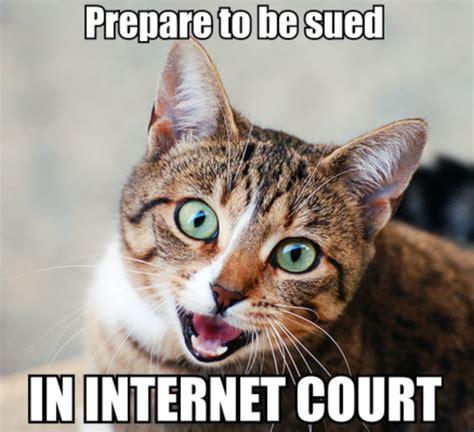Bad Kitty Meme - seananners meme memes