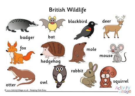 british wildlife word mat