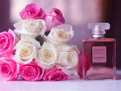 Chanel Coco Perfume Flowers Wallpapers Rose Mademoiselle