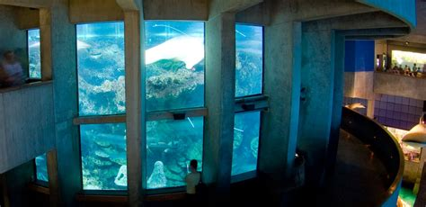 best aquarium in uk tips for knowledge the place to find something interesting on the web page 2