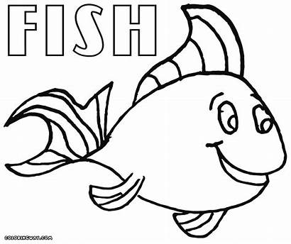 Fish Coloring Pages Puffer