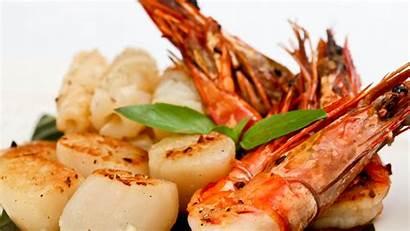 Seafood Shrimp Salad Scallop Foods Greens Diet