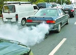 Car Pollution & Alternative Transportation K-1 ...