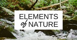 5 Elements of Nature to Incorporate in Your Home Midwest