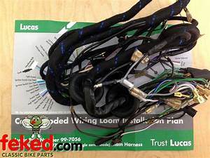 Electrical    Wiring Harness    Triumph Wiring Harness    Genuine Lucas Main Wiring Harness