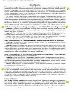 Specific Aims Nih Sample Grant Proposal