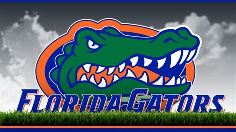 Florida Gators Backgrounds   PixelsTalk.Net