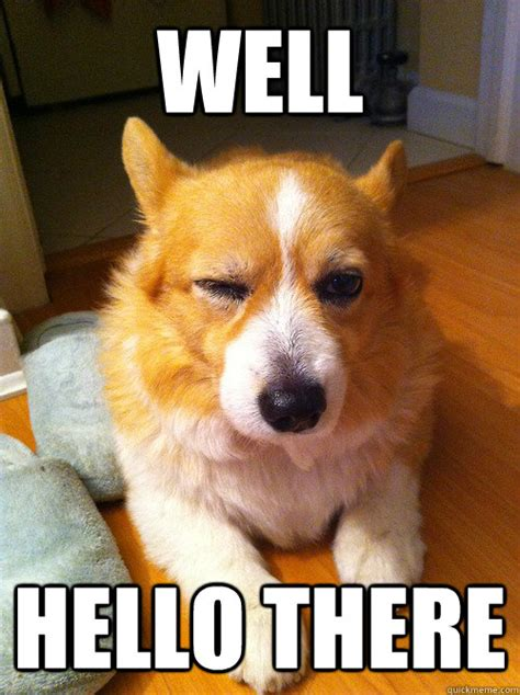 Well Hello There Meme - well hello there corgi come hither wink quickmeme