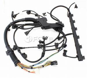 Bmw Engine Wiring Harness Engine Module  E46