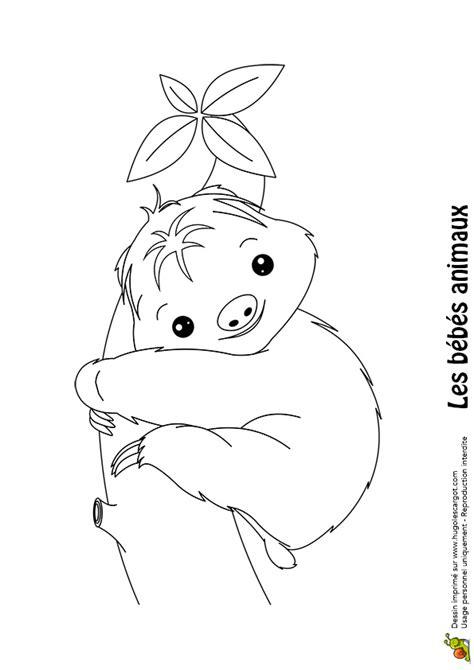 jeu de cuisine gratuit avec coloriage bébé paresseux hugolescargot com