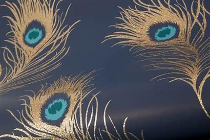 Navy Peacock Glitter Direct Albany Bedroom Tapeten