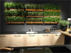 kitchen herb garden ideas big ideas for micro living trending in america huffpost