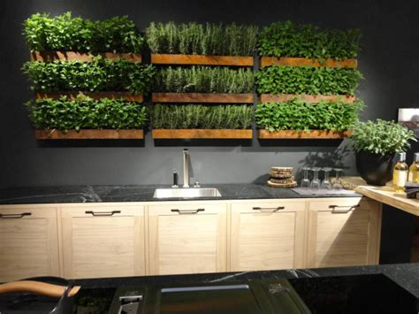 kitchen herb garden big ideas for micro living trending in america