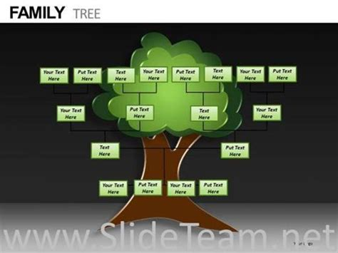 Powerpoint Genealogy Template by Family Tree Ppt Template Cpanj Info