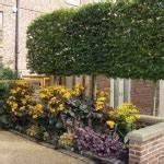 jardin en pente moderne idees et conseils en 25 photos With idee de cloture exterieur 15 29 idees pour integrer le gravier decoratif dans votre jardin