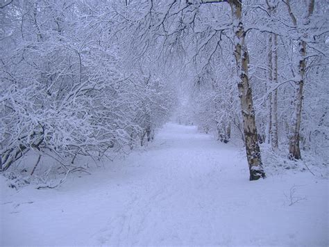 Cool Winter Background by Winter Scenery Backgrounds Wallpaper Cave