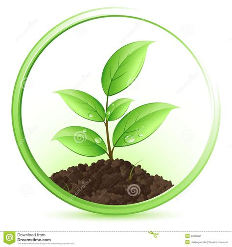 Plant Clip Green Plant Clipart Clipart Collection Green Plant