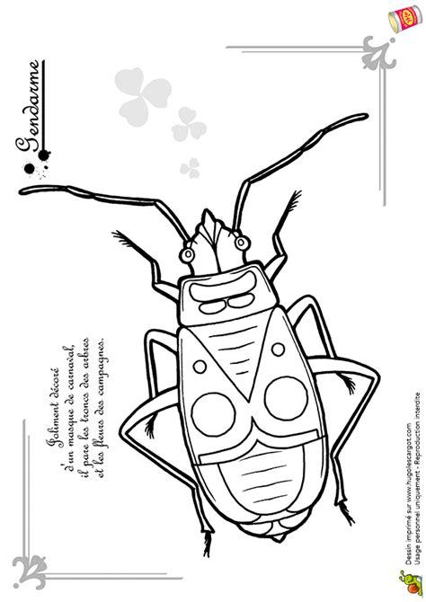 coloriage insecte les beaux dessins de nature  imprimer