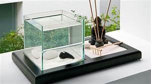 Deco Aquarium Zen : photo d co zen pour aquarium ~ Melissatoandfro.com Idées de Décoration