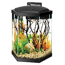Lava L Fish Tank Petsmart by Fish Tanks Aquariums Petsmart