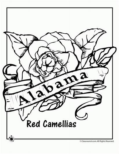 Alabama Coloring State Pages Flower Pennsylvania Bird