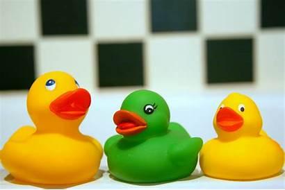 Toys Children Childrens Non Toxic Avoid Phthalates