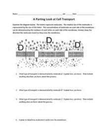 A Parting Look At Cell Transport Worksheet For 7th  12th Grade  Lesson Planet